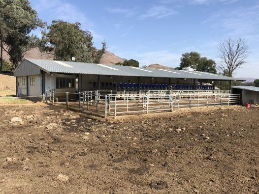 Milking shed - east elevation